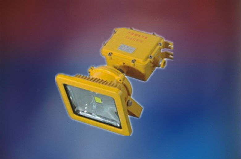 万博体育登录手机版LED应急照明灯